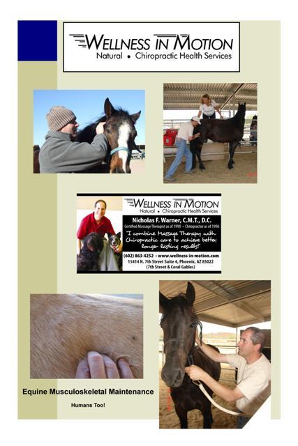 Equine Medicine